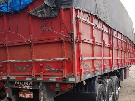 Polícia recupera 40 toneladas de papelão; carga roubada seria vendida por R$ 20 mil