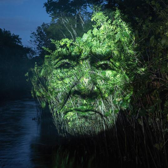 ROBERTA CARVALHO    Submersa | 2019 Da Série Projeto Symbiosis   Intervenção orientada para fotografia  50 x 28 cm