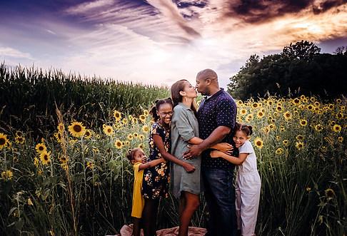 -sunflowers-8937.jpg