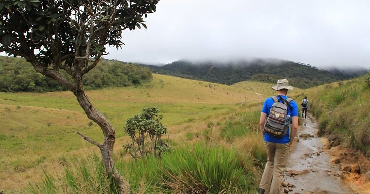 Horton plains.jpg