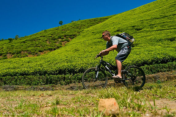 Mountain-Biking-Nuwara-Eliya-Sri-Lanka-4