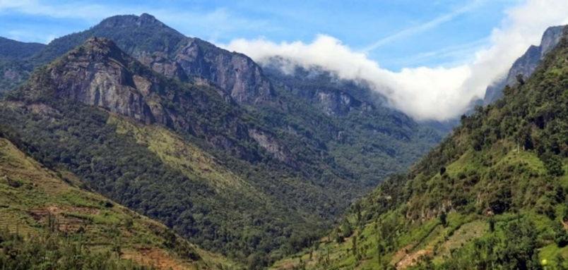pidurutalagala-mountain-5-.jpg
