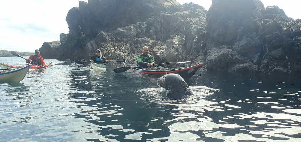 My face seeing a massively scared seal haha!