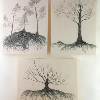 Mycelium series