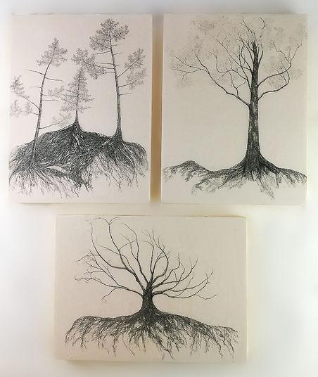 Mycelium series.jpeg