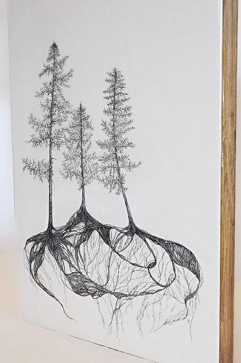 Mycelium (18x24)