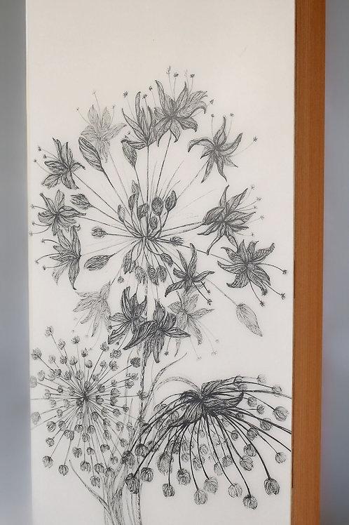 "6""x12"" Native Flowers"