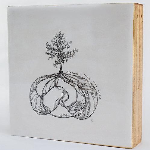 Mycelium (6x6)