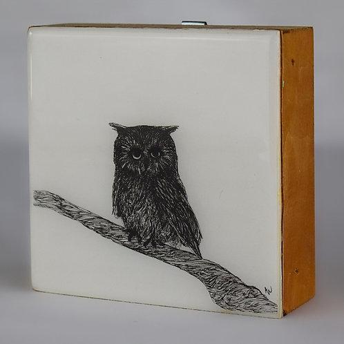 "4""x4"" Owls"