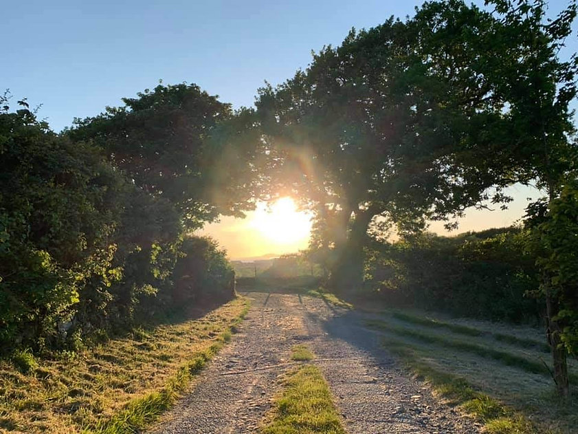 Argoed Farm Sunset on lane.jpg