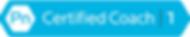 PN Logo 2_edited.png