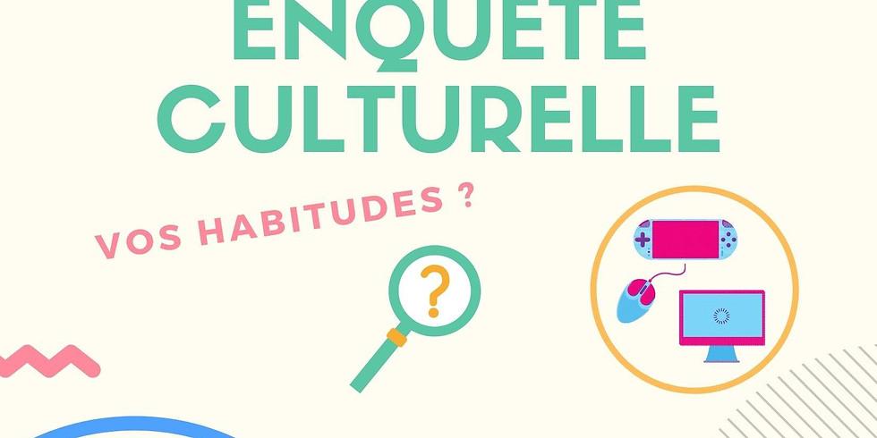 Enquête culturelle intercommunale