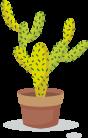 cactus-compétence.png