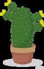 cactus-vue-archi.png