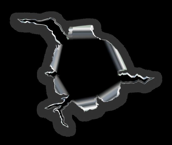 Bullet Hole - Razorback Armory Team - Gu