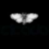 Logo Cicada-01.png