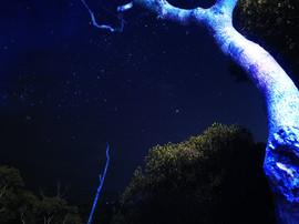Underworld starry sky - Noel