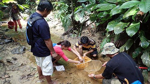 Fresh Water For Future Borneo