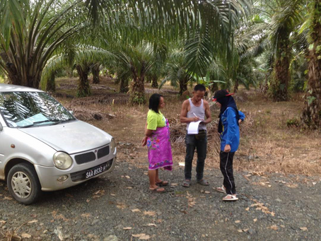 Sabah towards Roundtable on Sustainable Palm Oil (RPSO)