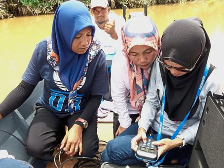 Agricultural run-off chokes Kinabatangan-Segama area