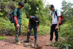 Community Elephant Ranger Team