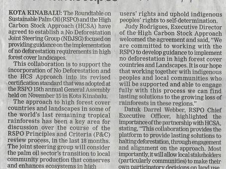 No deforestation in high forest cover landscapes