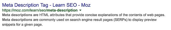 meta-description-Google-Search-moz.png