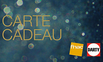 carte-fnac-darty-emrys