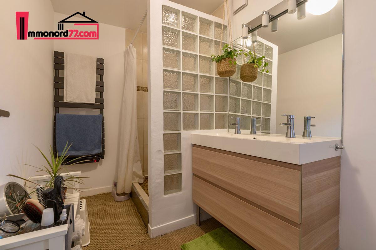 vente-maison-may-en-multien-salle-d-eau