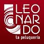 Leonardo salon.png