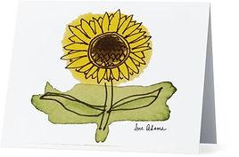 SITE CN003 Sunflower.jpg