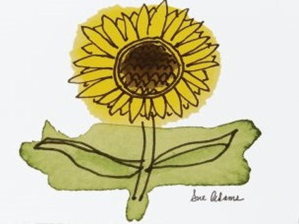Sunflower Postcard Set of 10