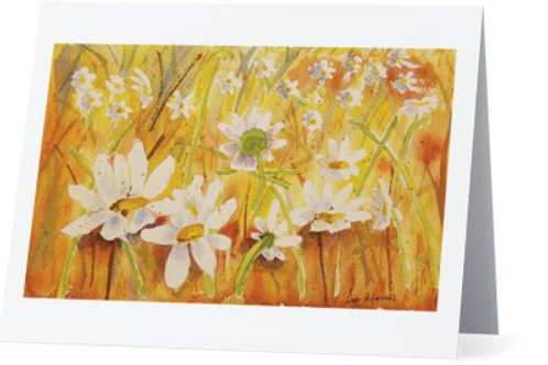 Daisies Note Card Set of 10