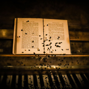 When words turn to music, and scent into stories