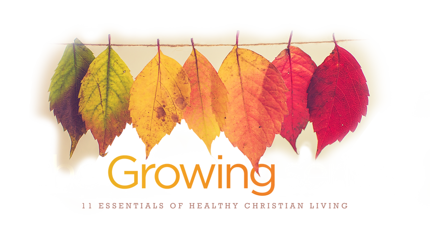 Growing Series - Text and Leaves.png