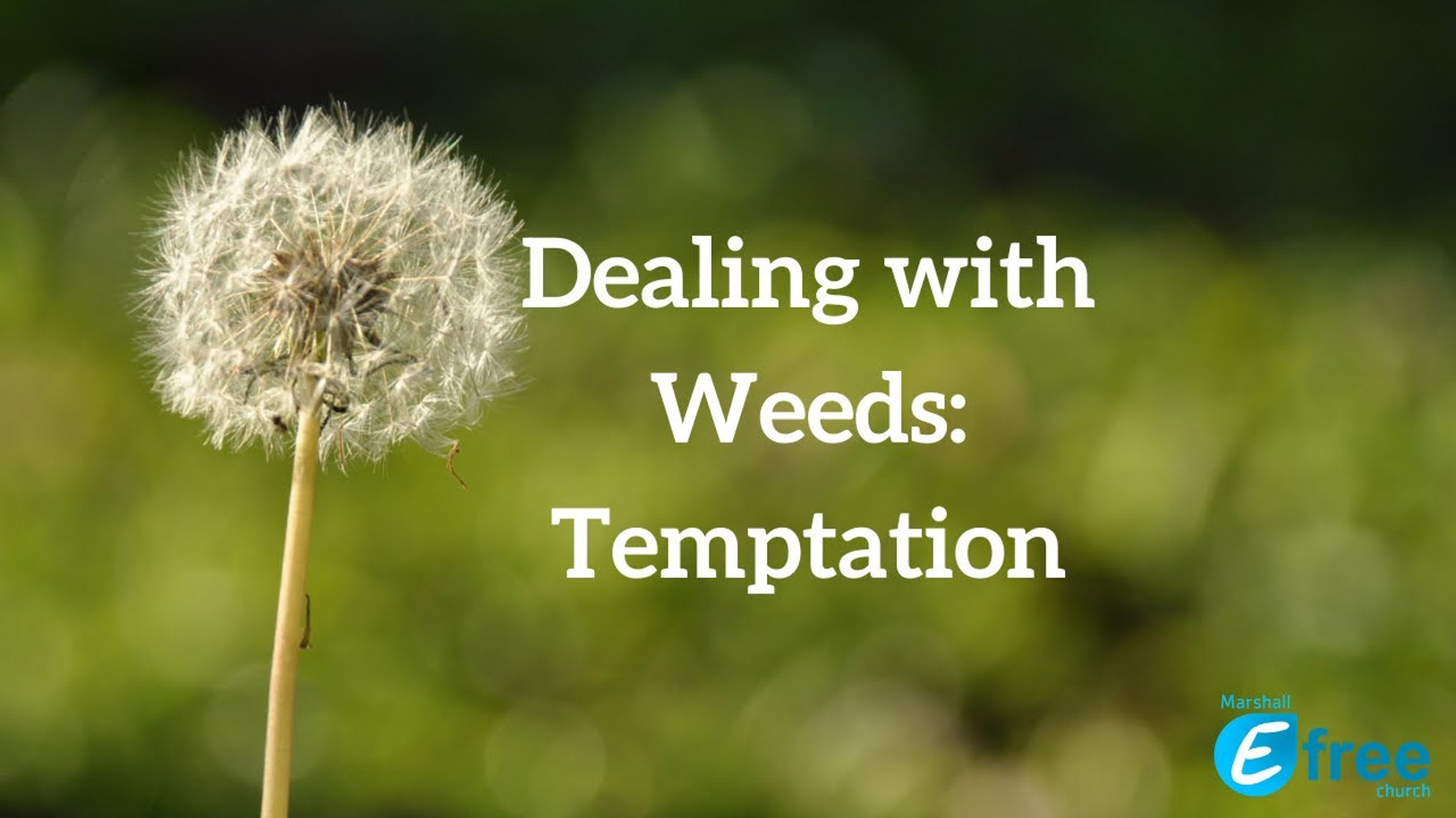 Dealing with Weeds: Temptation