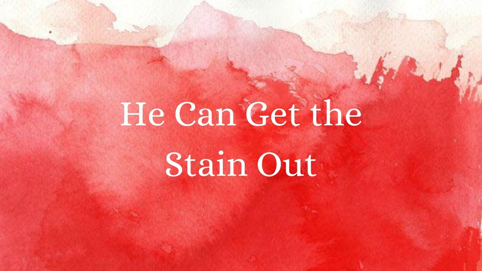 He Can Get the Stain Out