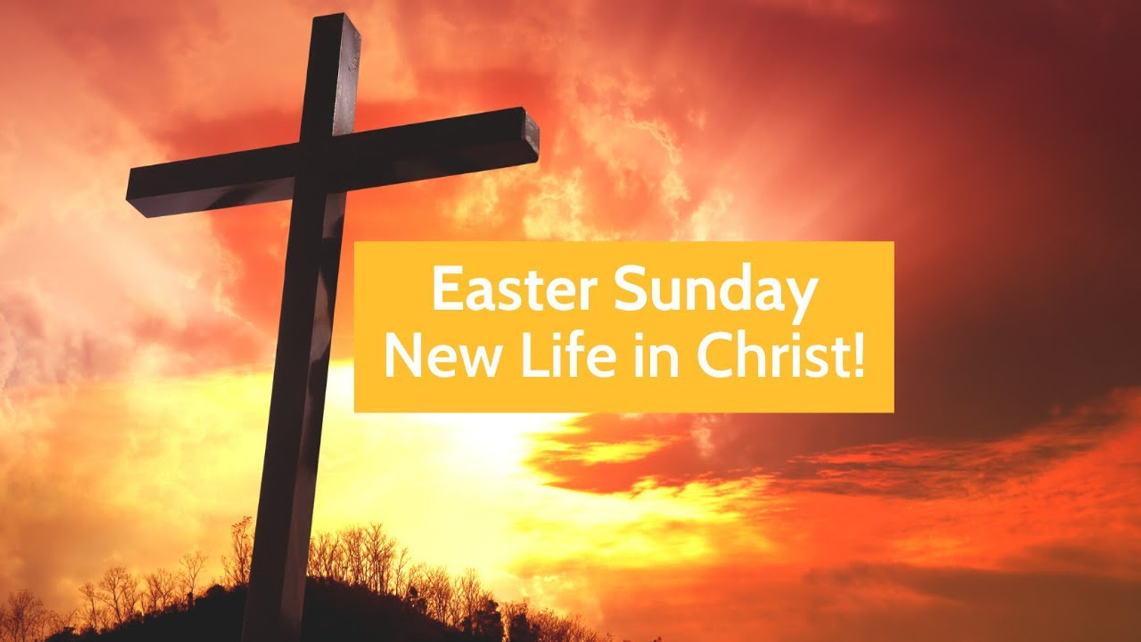 Easter Sunday! New Life in Christ
