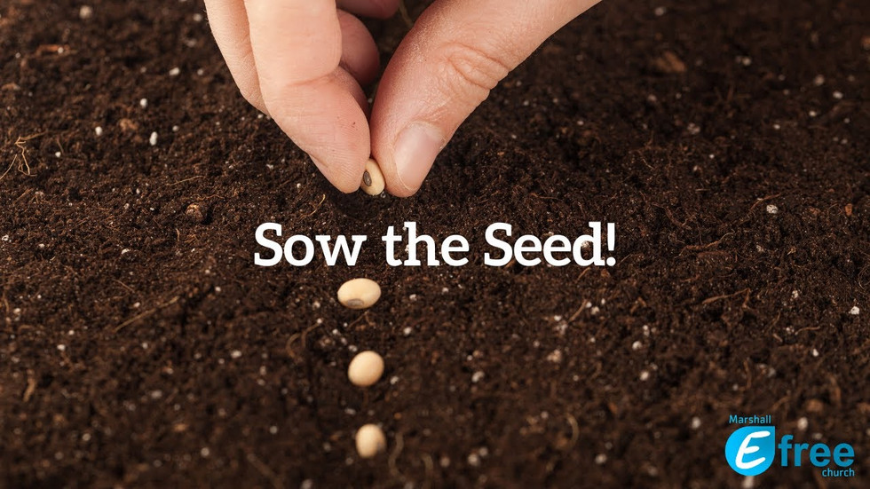 Sow the Seed!