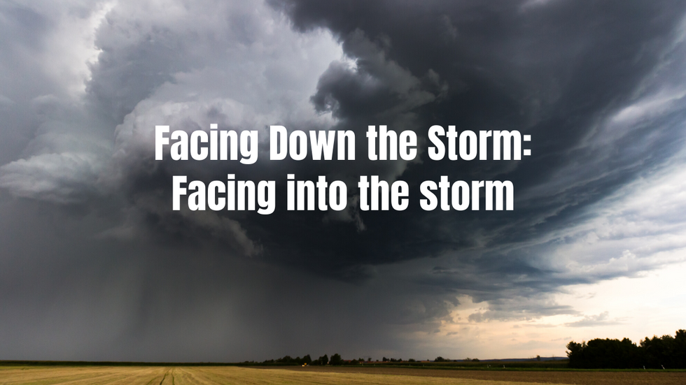 Facing into the storm