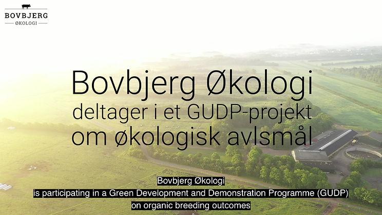 GUDP projekt