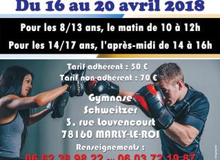 ♦ Du 16 au 20 avril 2018 | Stage de boxe anglaise pour les jeunes de 8 à 13 ans et de 14 à 17 ans