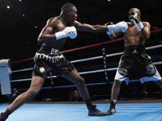 ♦ Les sports de combat de nouveau autorisés