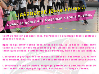 ♦ La brochure Aéroboxe Saison 2017/2018 est disponible ici.