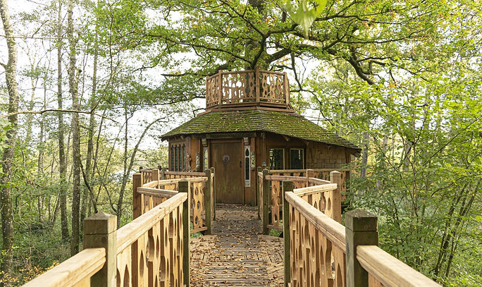 tree house 1.jpeg