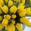 Thumbnail: Тюльпан Strong Gold (10000 шт.)
