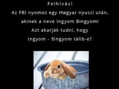 Ingyom-bingyom. Az FBI nyomoz egy magyar nyuszi után...