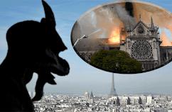 Gyűjtés a Notre Dame-ra, avagy az ostobaság magasiskolája