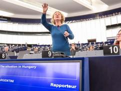 Sargentini csak ne aggódjon a magyar zsidóságért