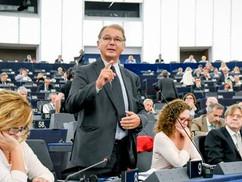 Az európai életmód ellen fakadt ki az európai zöldek vezére